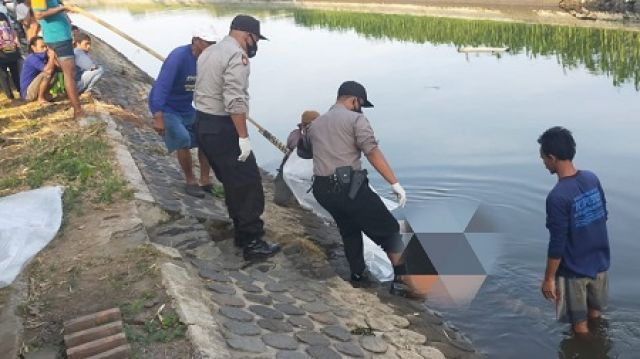Warga di Jombang Temukan Mayat Perempuan di Anak Sungai Brantas